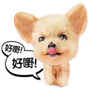 Cantonese Cat and Dog Stickers